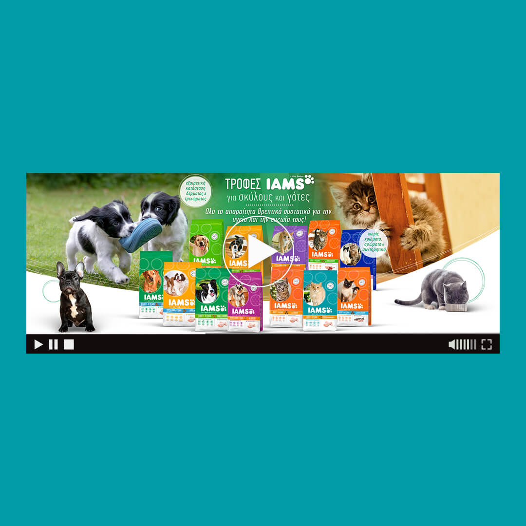 iams food for cats and dogs html5 banner